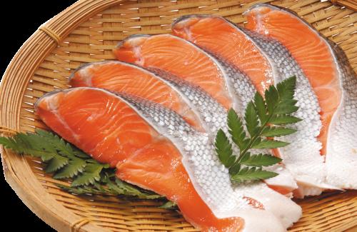 10月の太鼓判!チリ産 塩銀鮭切身(甘口・養殖)